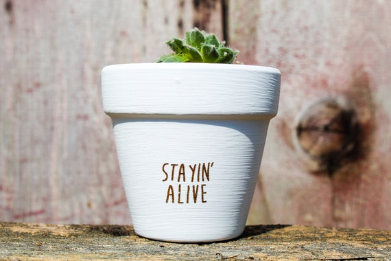 Stayin Alive Succulent Pot