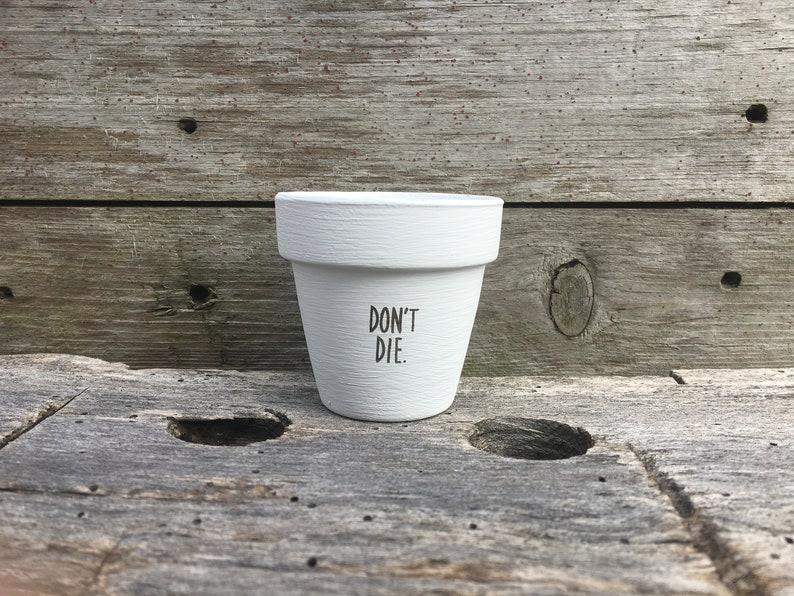Don't Die Succulent Pot image 0