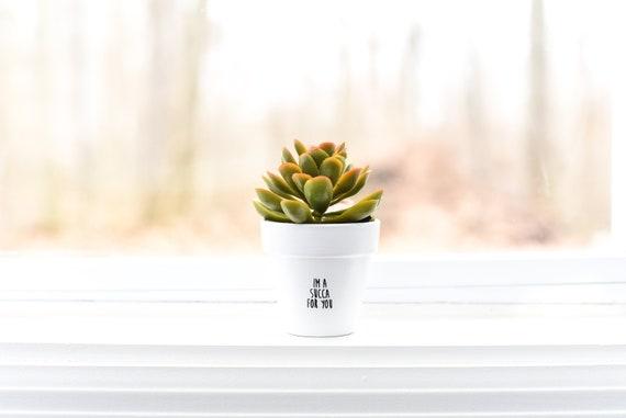 I'm a Succa for You   Plant Pot
