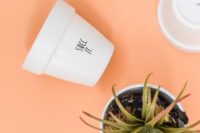 Succ It  Plant Pot image 1