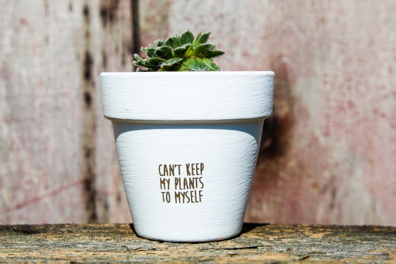 Can't Keep My Plants to Myself Succulent Pot image 0