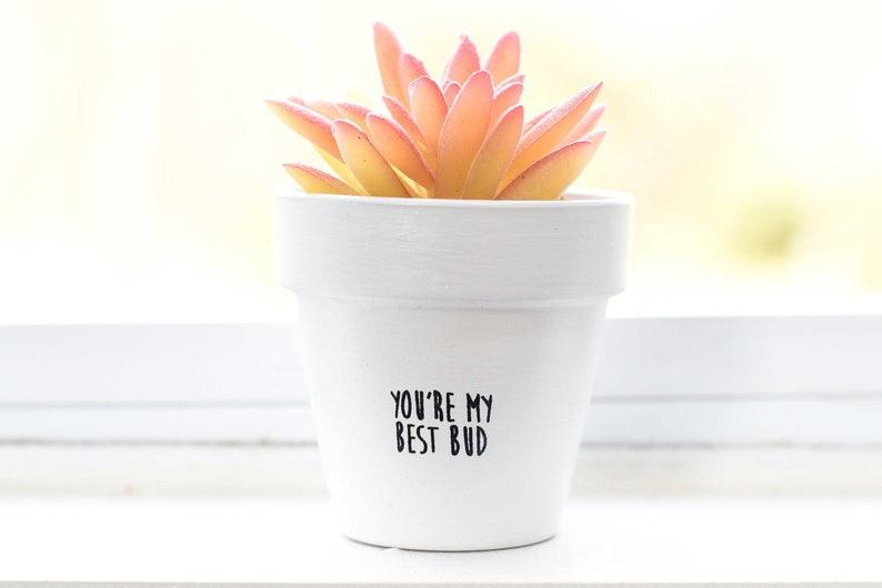 You're My Best Bud  Plant Pot image 1