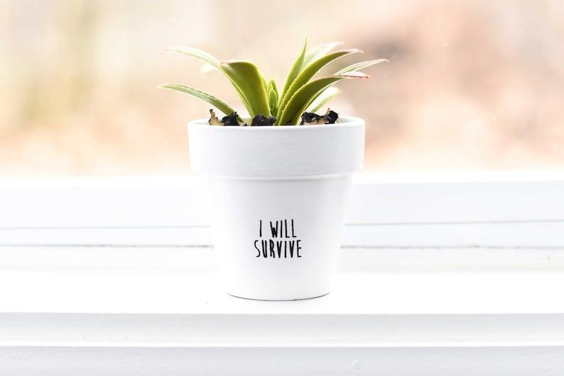 I Will Survive  Plant Pot image 1