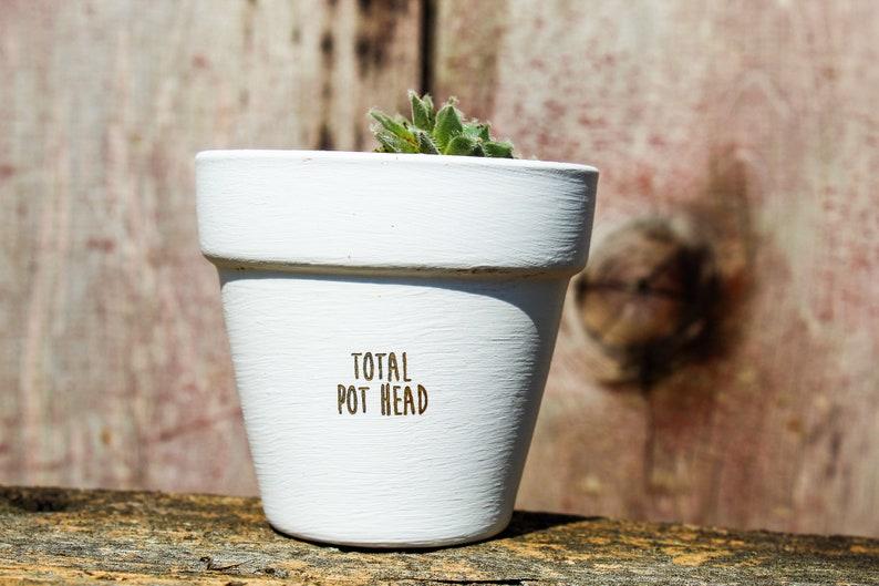 Total Pot Head Succulent Pot image 0