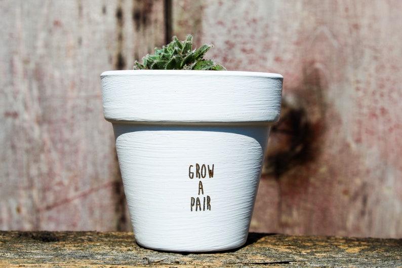 Grow a Pair Succulent Pot image 0