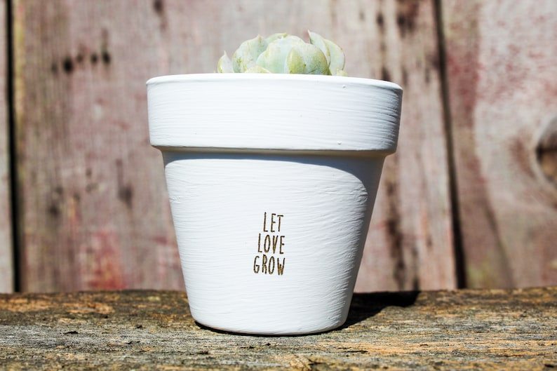Let Love Grow Succulent Pot image 0