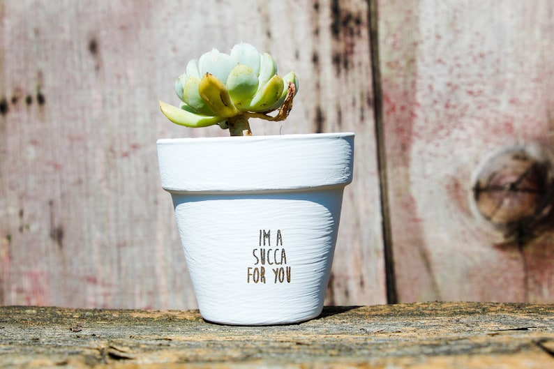 I'm a Succa for You Succulent Pot image 0