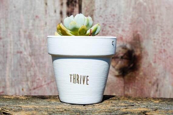 Thrive Succulent Pot