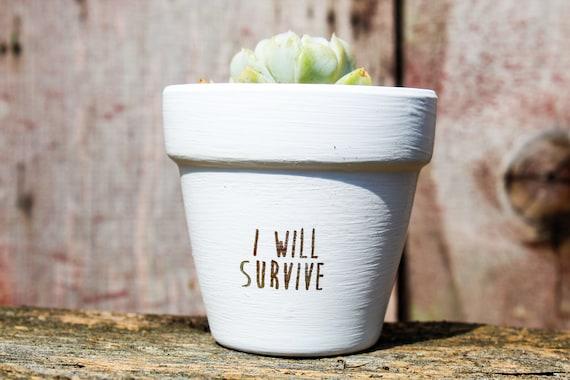 I Will Survive Succulent Pot
