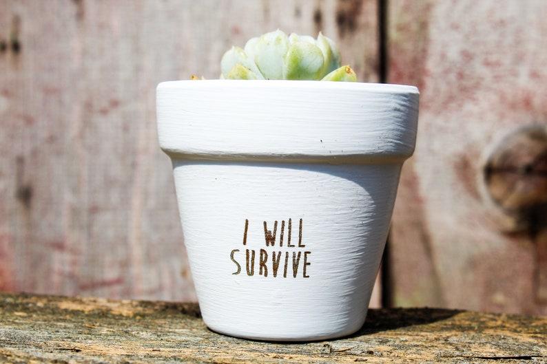 I Will Survive Succulent Pot image 0
