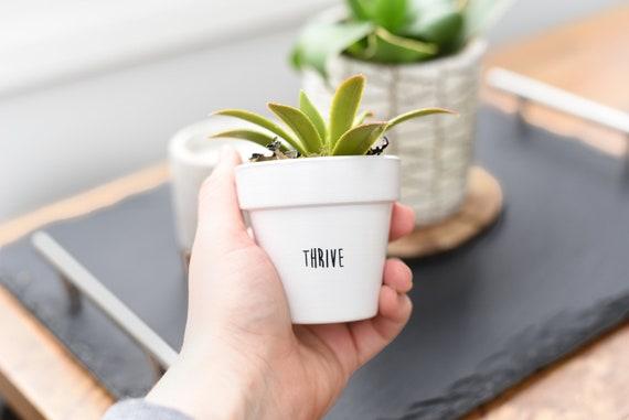 Thrive   Plant Pot