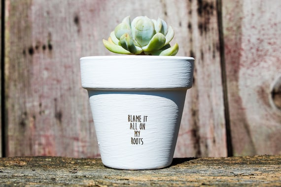 Blame it all on my roots Succulent Pot