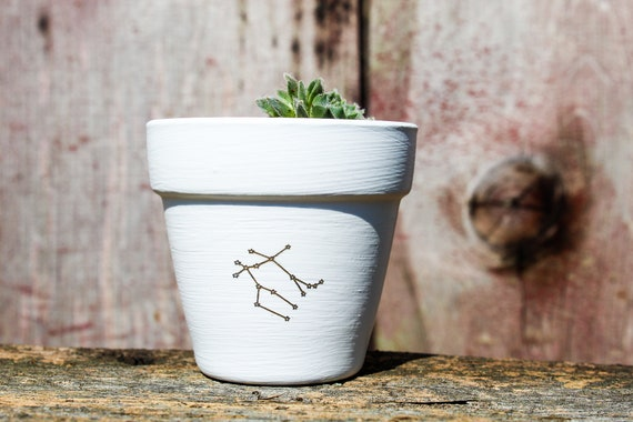 Zodiac Succulent Pot