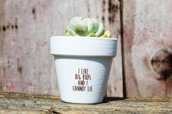 I like big buds and I cannot lie Succulent Pot