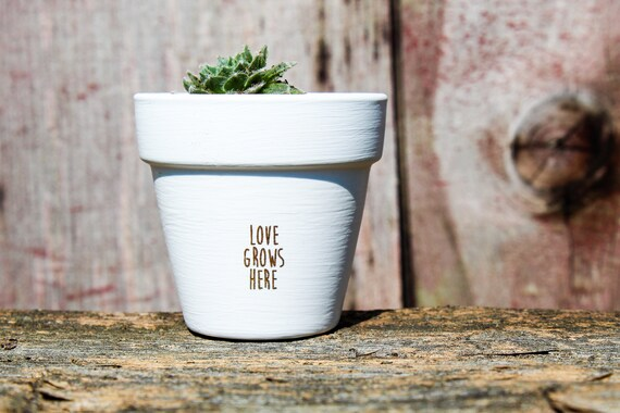 Love Grows Here Succulent Pot