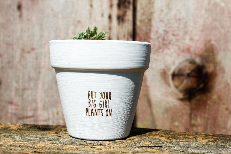 Put Your Big Girl Plants On Succulent Pot image 0