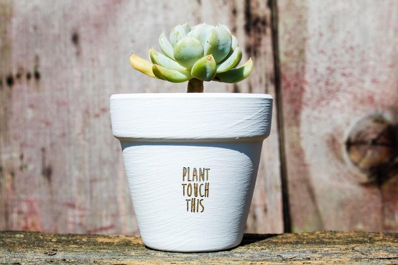Plant Touch This Succulent Pot image 0