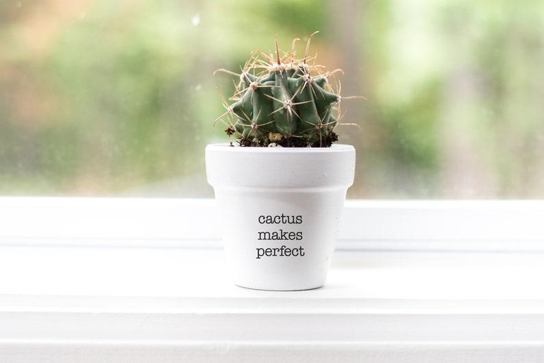 Cactus Makes Perfect  Plant Pot image 1