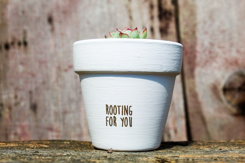 Rooting for You Succulent Pot image 0