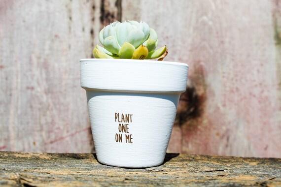 Plant One On Me Succulent Pot