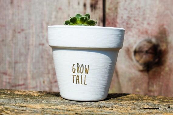 Grow Tall Succulent Pot