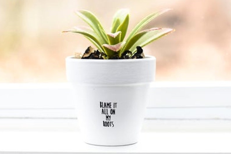 Blame it all on my roots  Plant Pot image 1