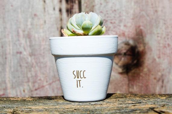 Succ It Succulent Pot