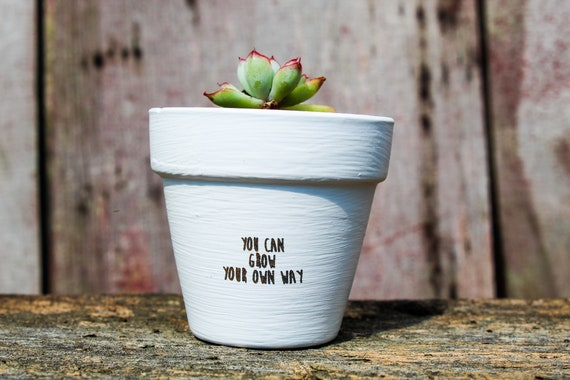 You Can Grow Your Own Way Succulent Pot