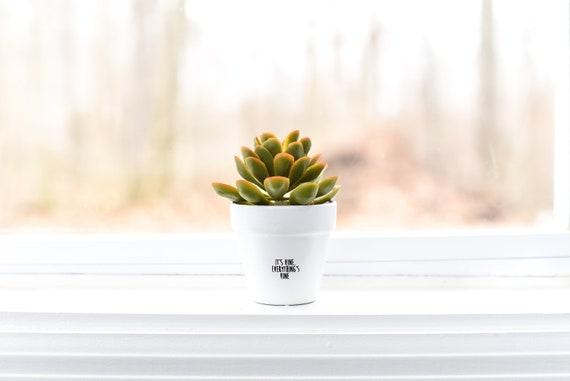 It's Vine everything's Vine   Plant Pot