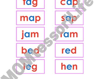 Printable Montessori Pink Series Photos and Words Cards in Montessori Colors