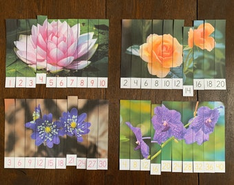 Montessori-Inspired Flower Skip Counting Puzzles Printable