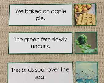 Printable Montessori Green Series Sentence Strips