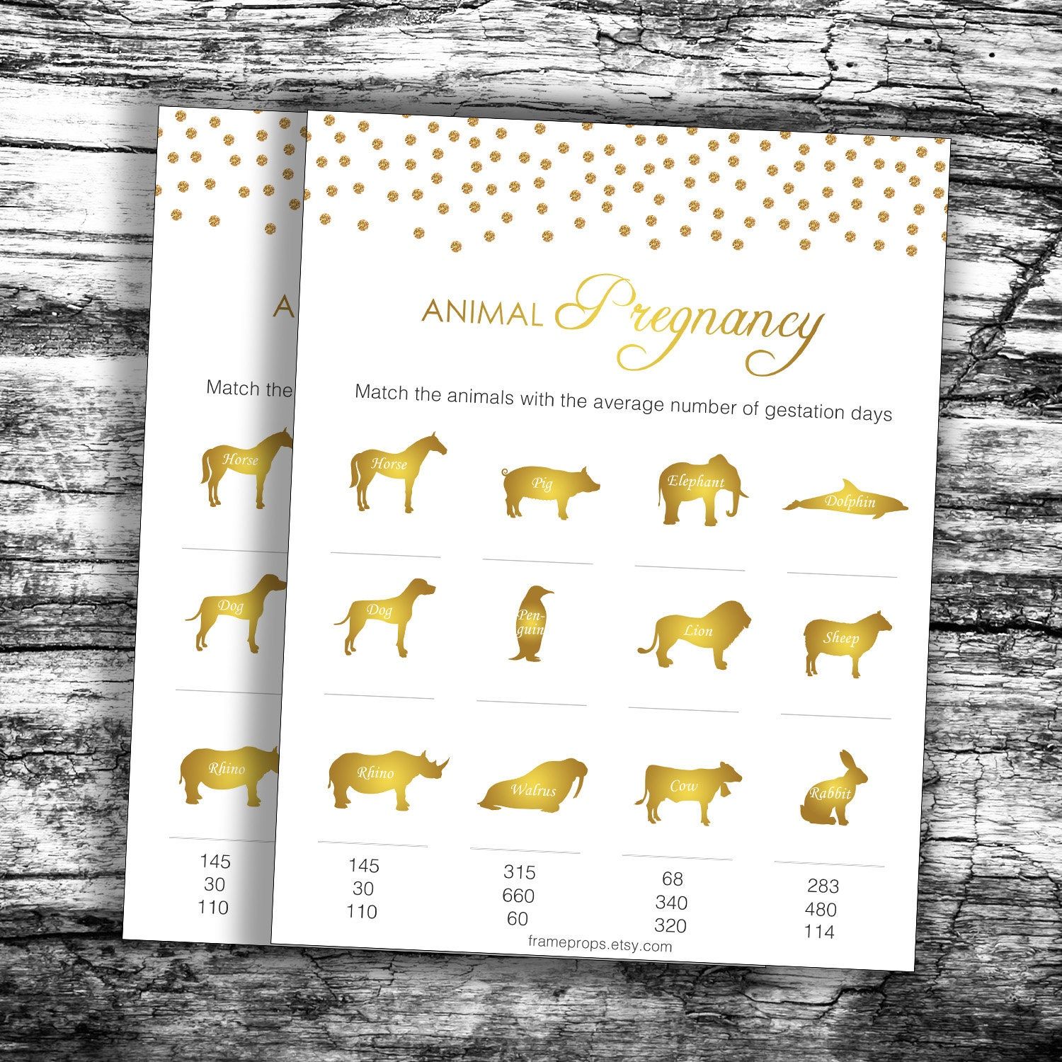 Gold Animal Pregnancy Game, Animal Gestation Game, Baby Shower Game, Guess  the Pregnancy Days, Baby Animal Game, Animal Pregnancy