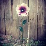 Metal flower Garden Stake, Phlox Flower, Metal garden Art, Garden Ornament, Metal Garden Decor