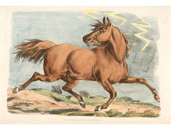 Brown horse art print, Antique horse art, Horse fine art, Horse wall art, Equine art, Horse running, Horse drawing, Horse painting, Etching