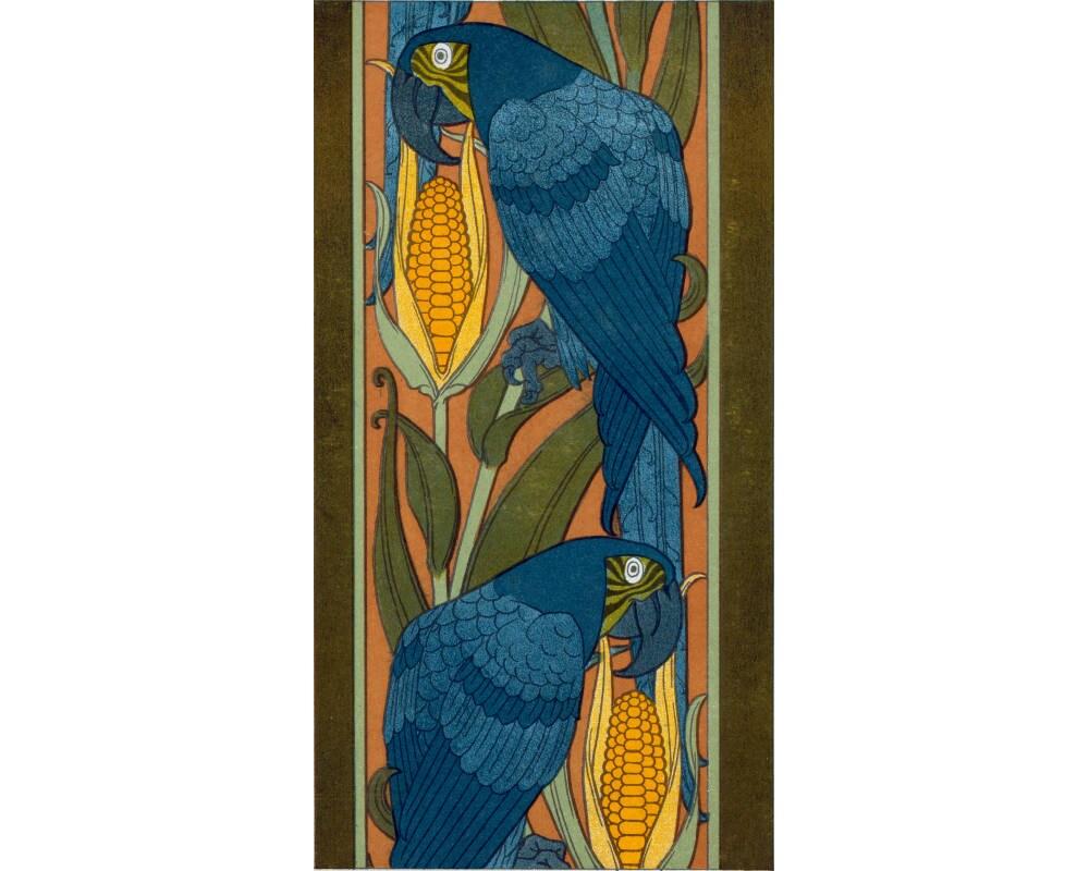 10x20 Macaw
