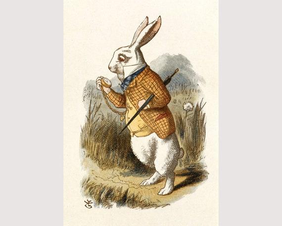 Alice In Wonderland White Rabbit Art Print Vintage Antique Book Page Wall Art
