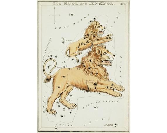 Monoceros UNICORN Constellation ZODIAC Chart ASTRONOMY Astrology Poster Print
