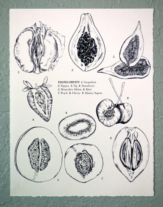 Vagina Fruits Drawing 8x10 Etsy