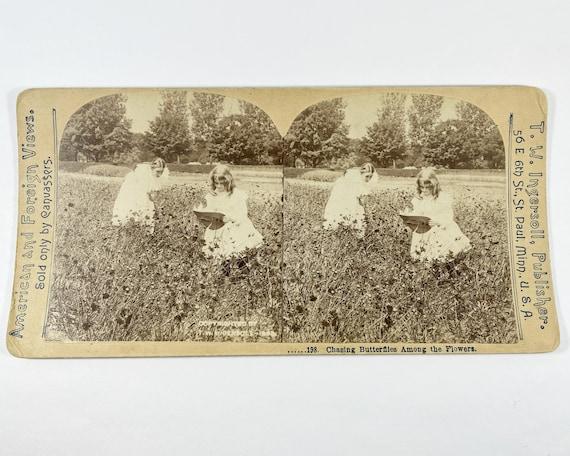 "T. W. Ingersoll Stereoview 198 ""Chasing Butterflies Among the Flowers"" Little Girls Catching Butterflies"