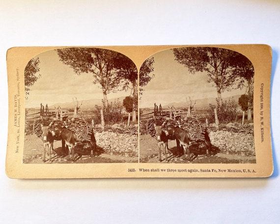 Antique B. W. Kilburn Sepia Stereoview - 5433 When Shall We Three Again, Santa Fe, New Mexico - Wood Carrier with Donkeys