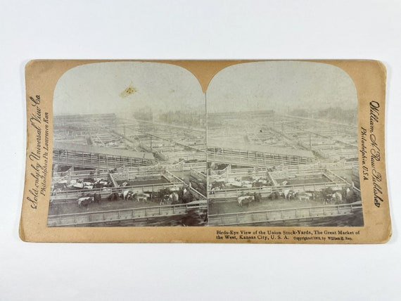 """Universal View Co. William H. Rau Stereoview """"Birds-Eye View of the Union Stock-Yards, The Great Market of the West, Kansas City"""""""
