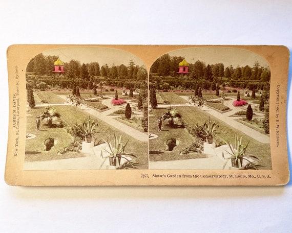 Antique B. W. Kilburn Stereoview - Shaw's Garden from Conservatory, St. Louis, Missouri Botanical Garden - James M. Davis