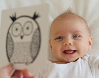 Black and white High-contrast Baby Flash cards Woodland