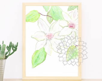 Clematis, flower, print, nature, wall decor, watercolor, gift, nature lovers, plant lovers, botanical, room decor, mother's day, baby shower