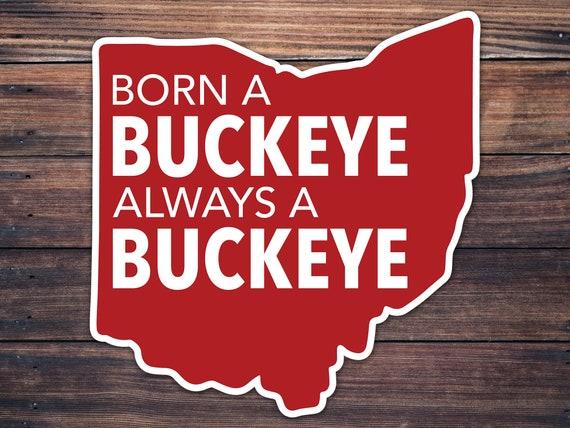 Born A Buckeye Always A Buckeye Osu Decal Layered Car Wall Etsy
