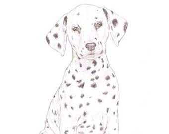 Dot the Dalmatian - Blank Card