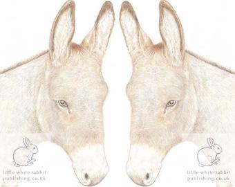 Donkey Anniversary Card