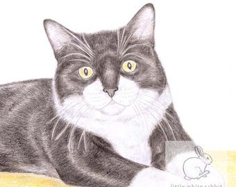 Mittens the Cat - Birthday Card