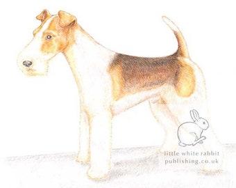 Bob the Fox Terrier - Blank Card